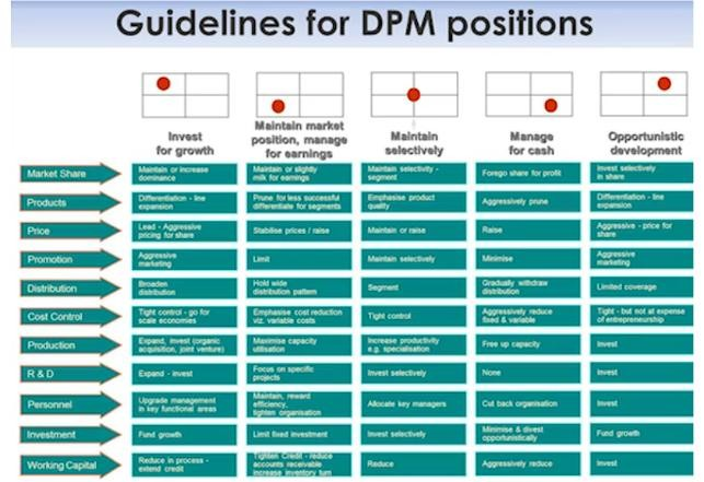 GUIDELINES FOR DPM POSITIONS