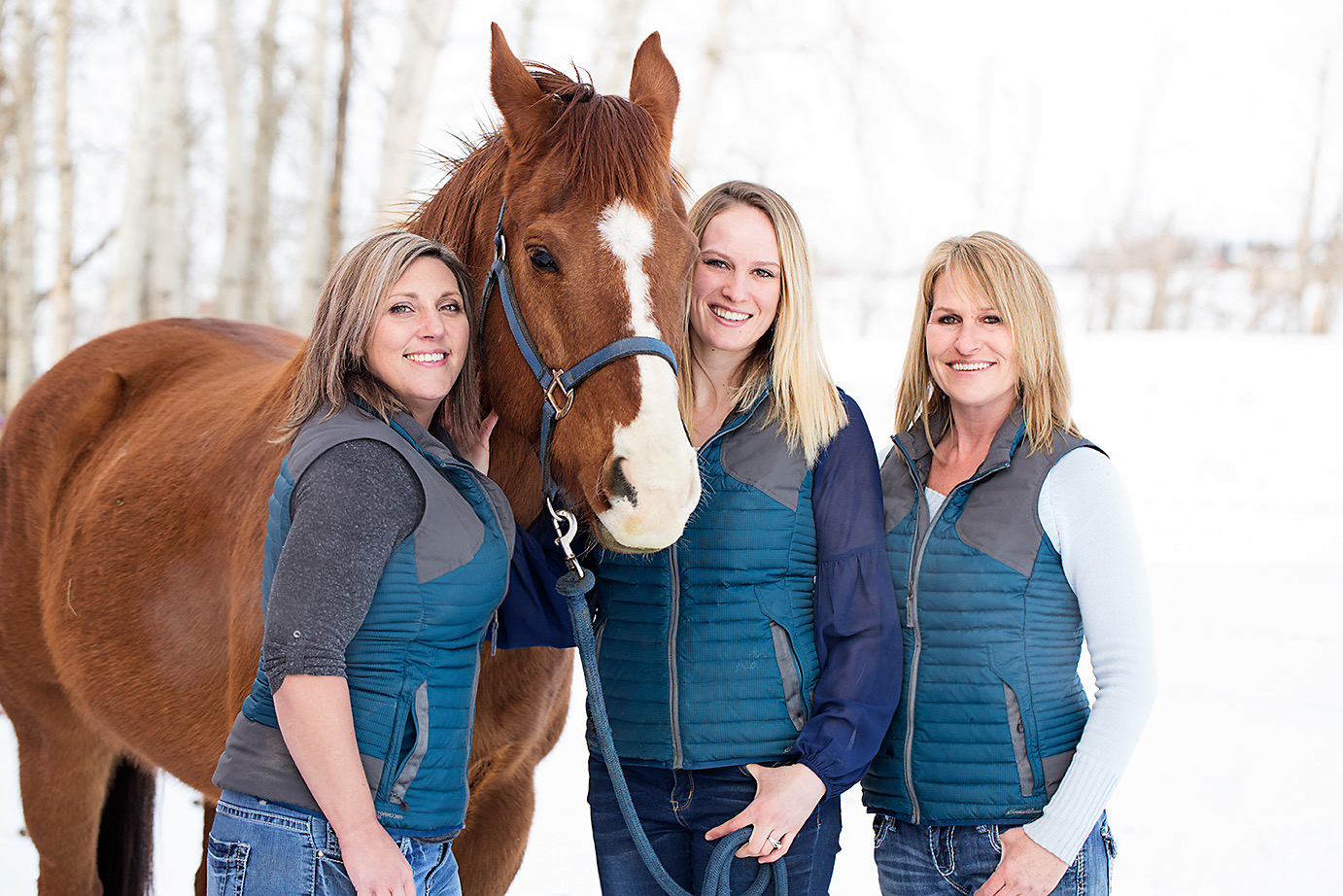Equine Connection Team