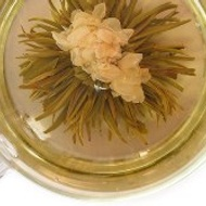 Jasmine Bloom from Nuovo Tea