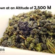 Taiwan Da Yu Ling Oolong Tea from Nuvola Tea