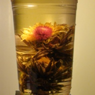 Blooming Lemon Nirvana from Teavana