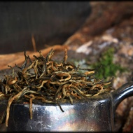 Yunnan Gold Tips from Whispering Pines Tea Company