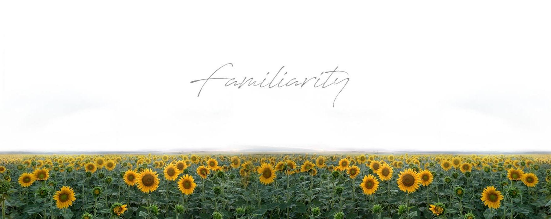 Familiarity: Runway Crimes Album Launch