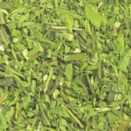 Echinacea Purpurea from Shanti Tea