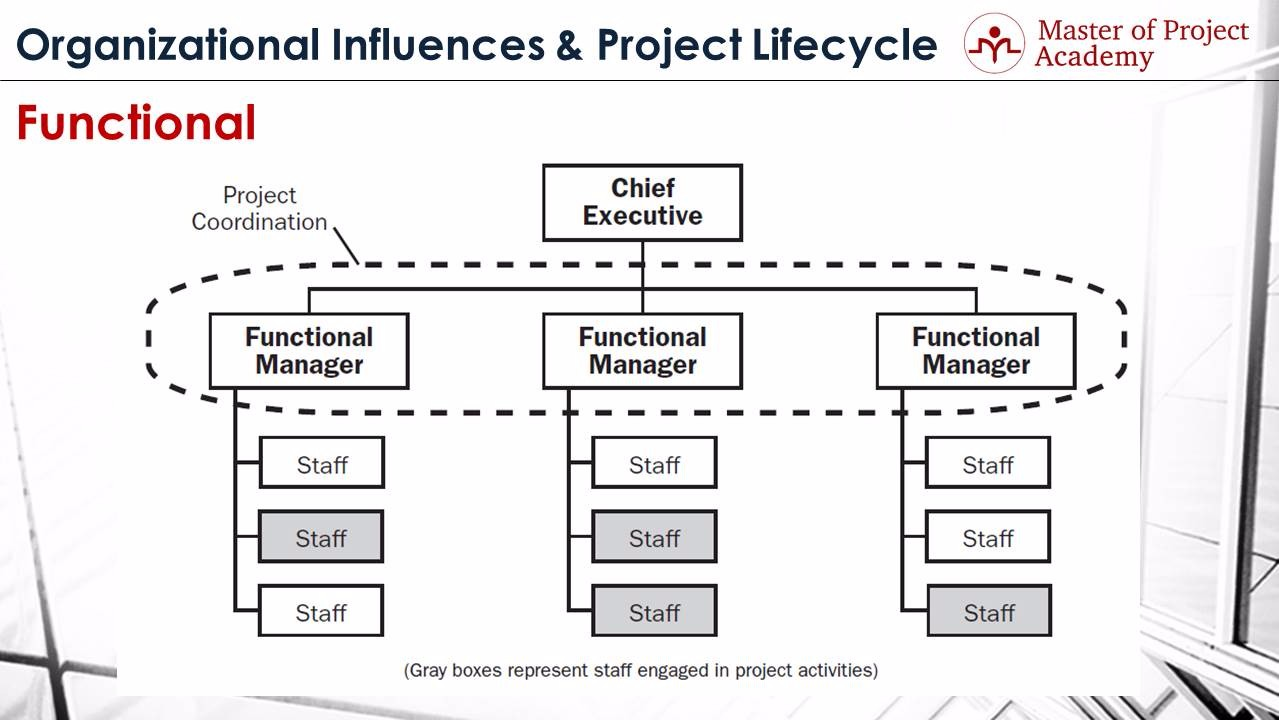 pure project structure the pure project organization