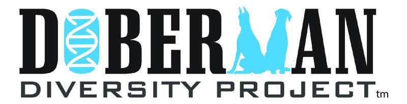 DDP Banner Logo wTM-01jpg