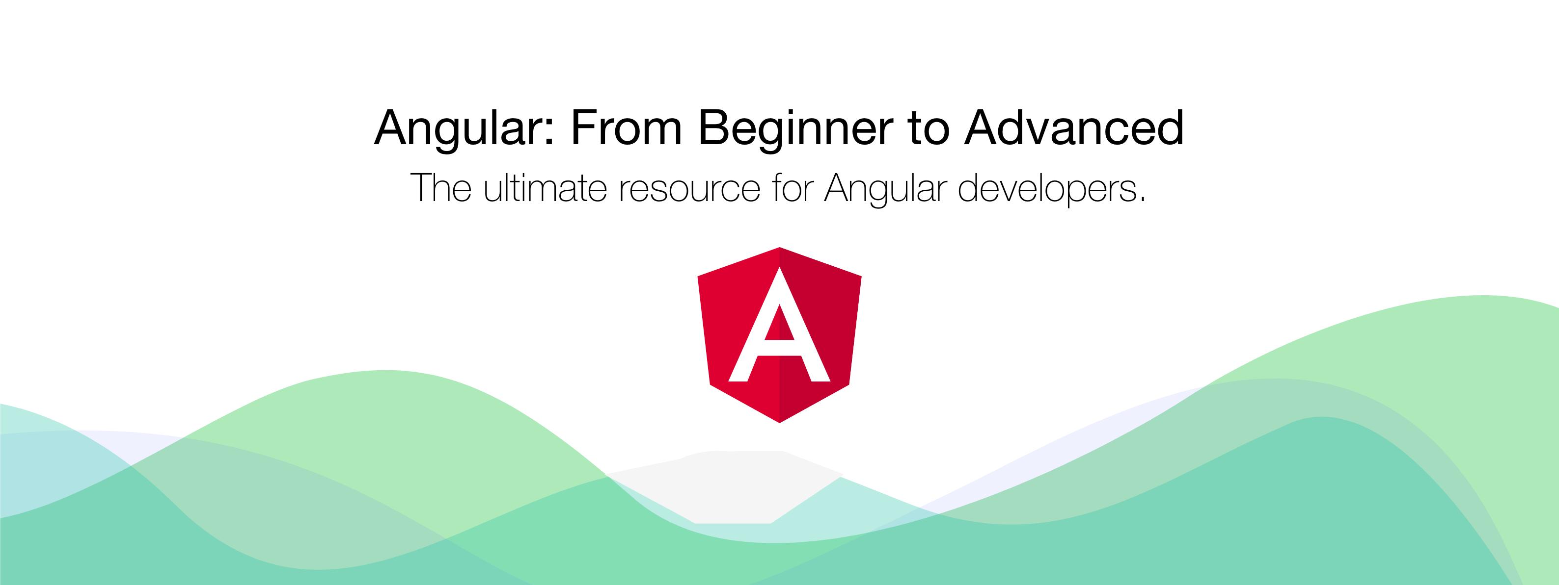 Angular: From Beginner to Advanced | Developer School