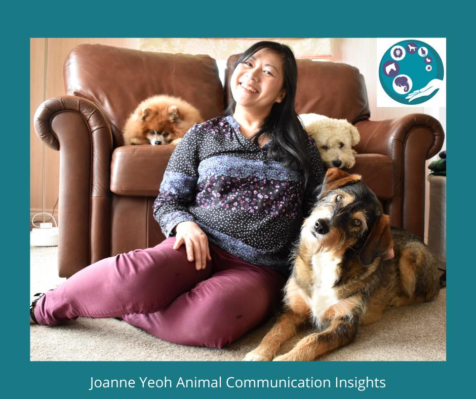 Joanne Yeoh
