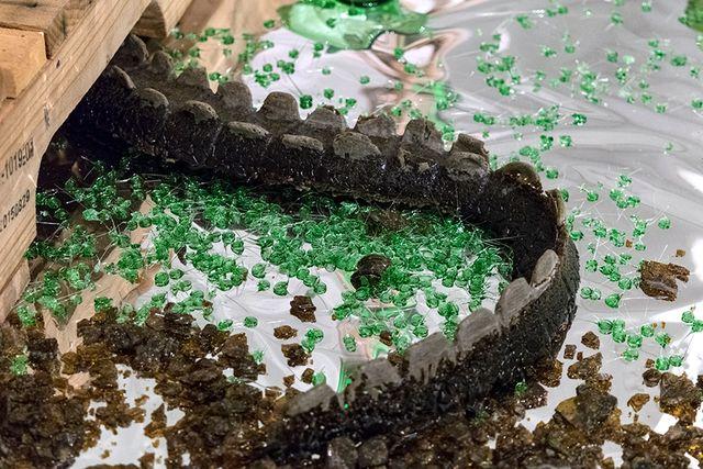 image: Alligator Tail, Dark Brown- Bottle Glass