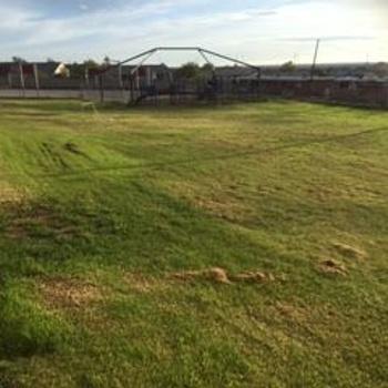 Playfield