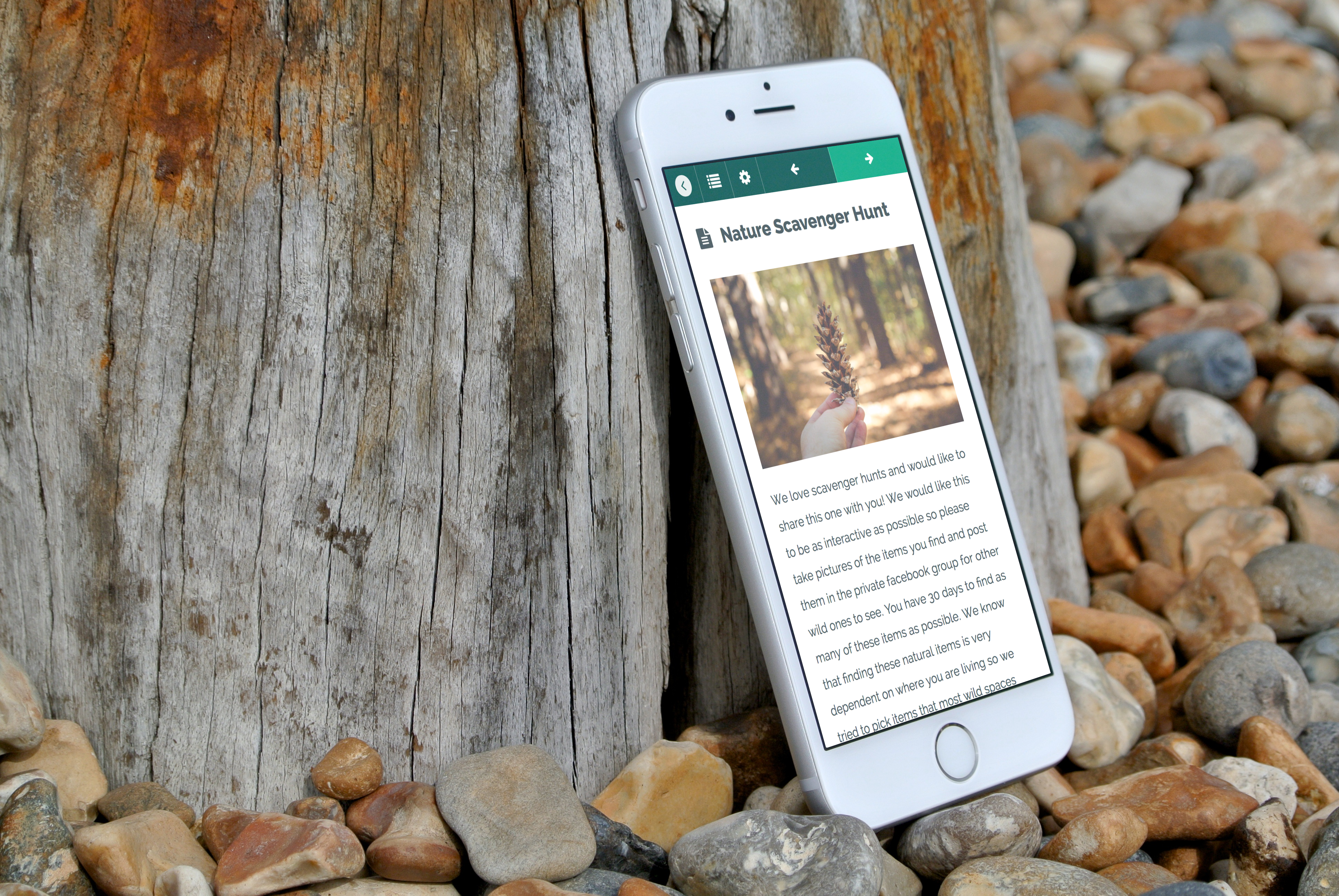Rewild your life 30 day program we are wildness university have fun with your friends and family with our interactive nature scavenger hunt share your finds with the rewild your life community and see if you can fandeluxe Gallery