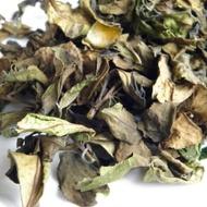 Winter Mountain White Tea from Health&Tea