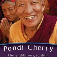 Pondi Cherry from Ohio Tea Company