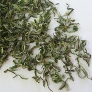 Darjeeling First Flush Oolong from Fresh Darjeeling Tea
