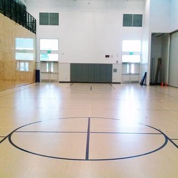 Gym (Small)