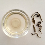 AA Grade Jasmine Pearls from Wan Ling Tea House
