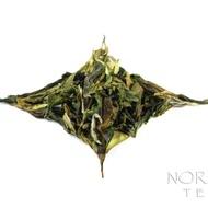 Giddapahar Hand Rolled Darjeeling Tea - First Flush, 2013 from Norbu Tea
