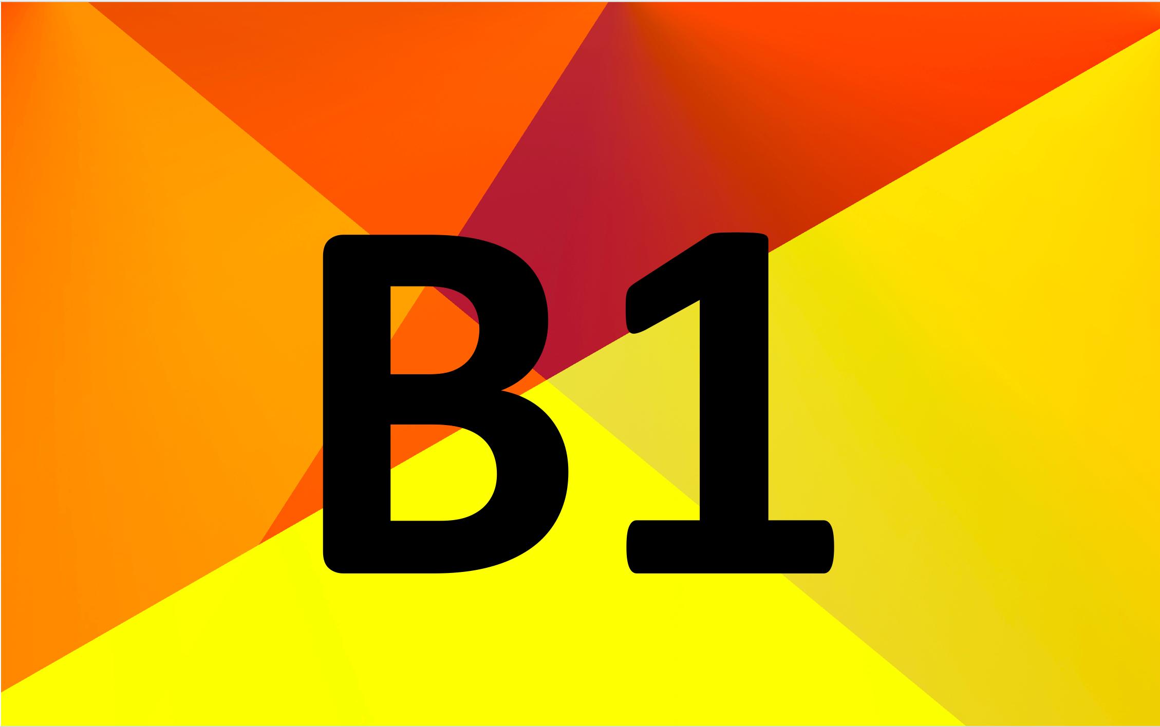 Goethe Zertifikat B1 Video Kurs German Test Success