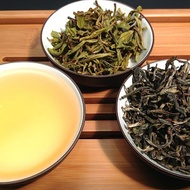 Torch Festival Green Tea from Mandala Tea