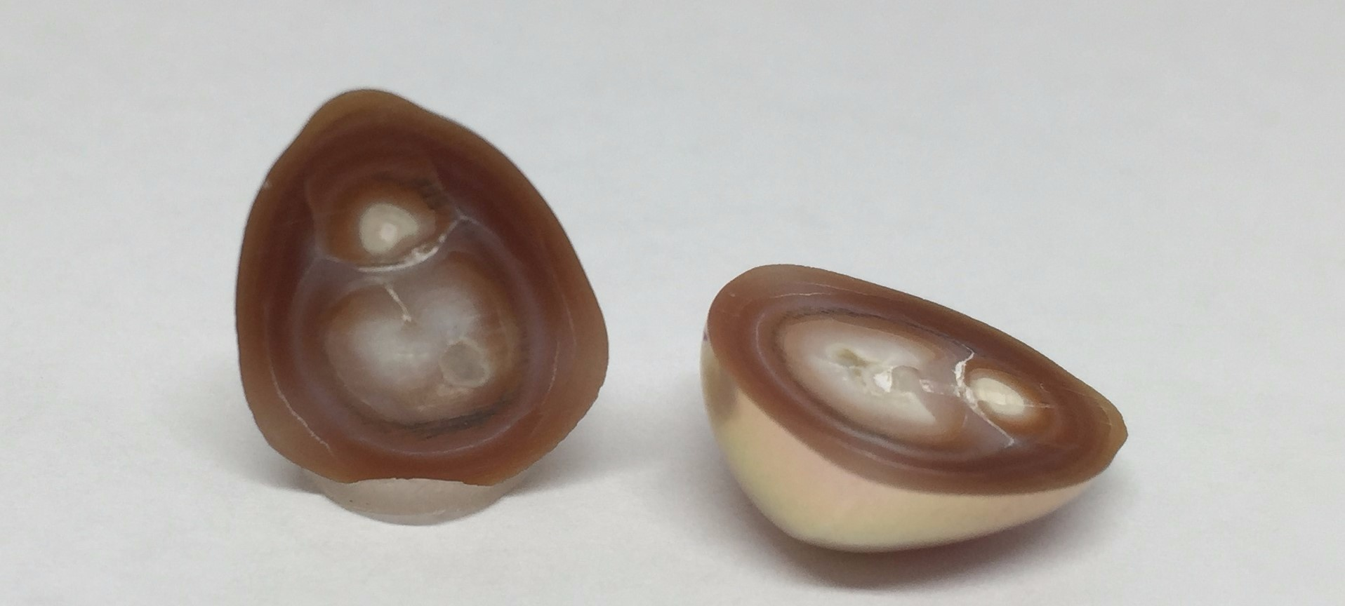 Introduction To Cultured Pearls Pearls As One Pearl
