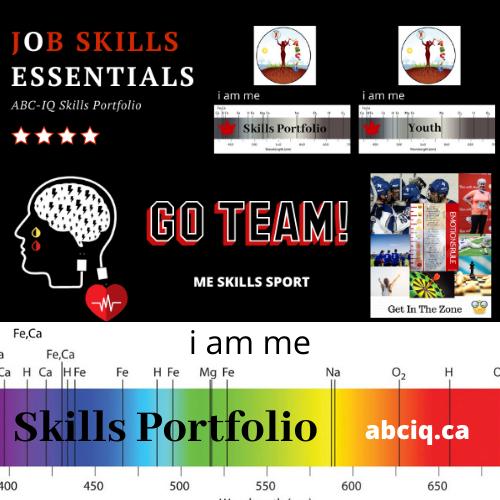 Skills Portfolio