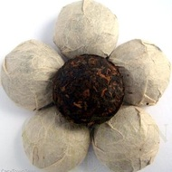 Ancient Golden Tuo Cha (Bird Nest) from Carytown Teas