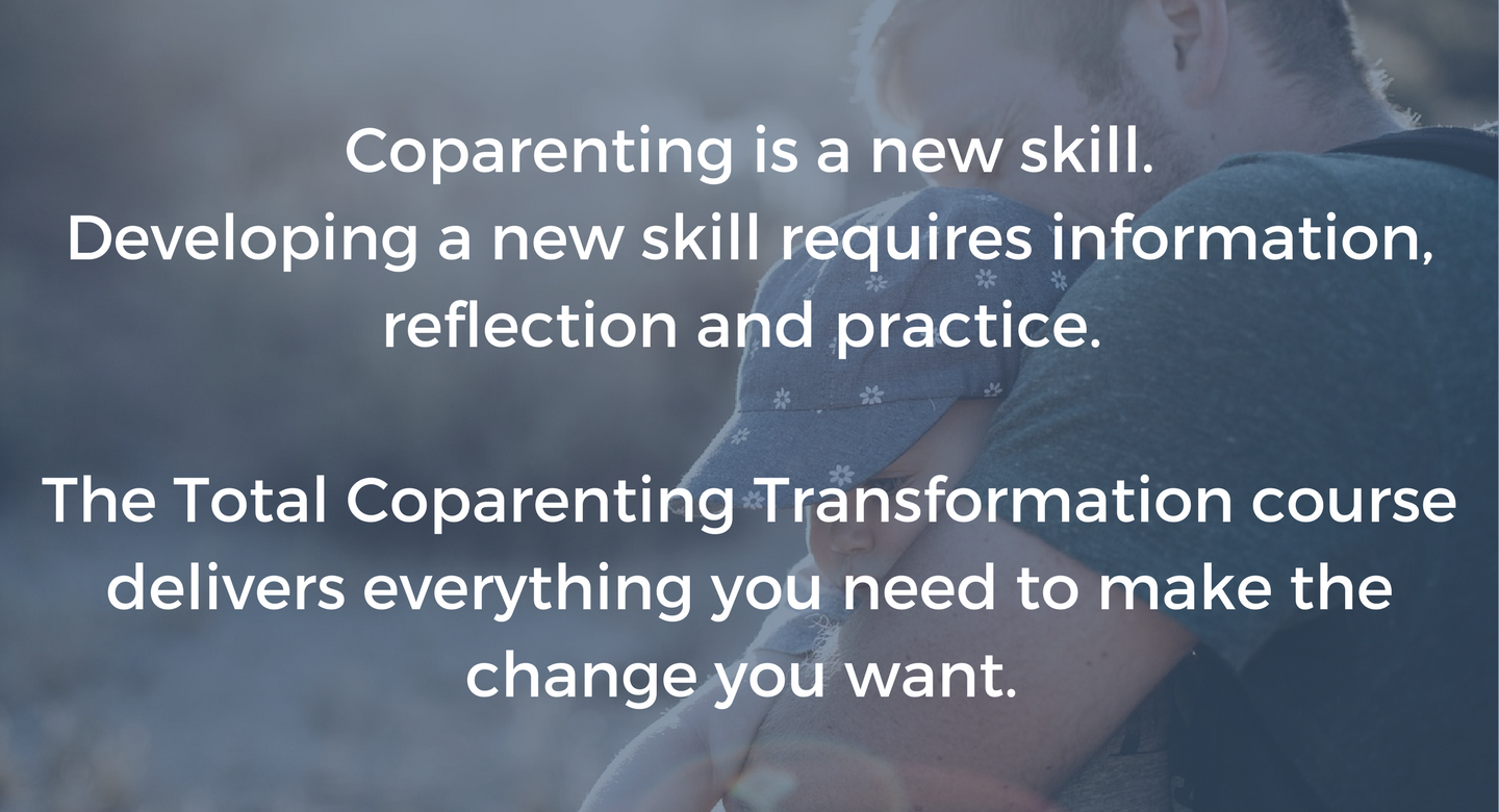 Workbooks total transformation workbook : Total Coparenting Transformation | This Life in Progress: Divorced