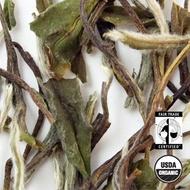 Organic Bai Mu Dan White Tea from Arbor Teas