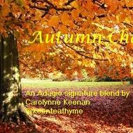 Autumn Chai from Adagio Teas Custom Blends