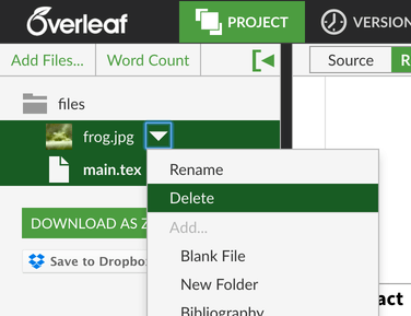 Overleaf files long filename screenshot