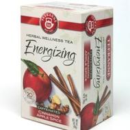 Cinnamon Apple Spice from TEEKANNE Herbal Wellness Tea