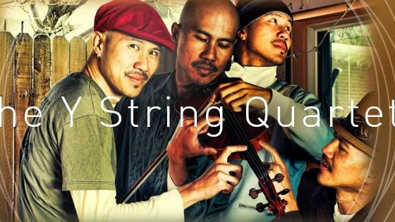 The Y String Quartet