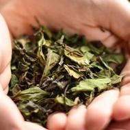 Shou Mei from Verdant Tea