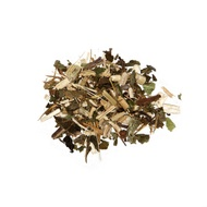 Echinacea from international house of tea