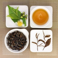 Oriental Beauty Superior Grade Oolong Tea, Lot 883 from Taiwan Tea Crafts