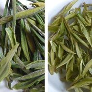 2013 Pre-Qingming An Ji Bai Cha First Day Harvest from Life In Teacup
