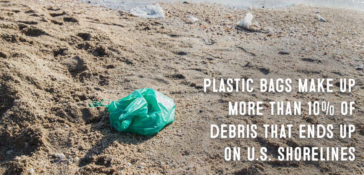 Change the World: 5 Reasons to Join the Reusable Grocery Bag Movement