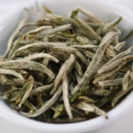 King of Silver Needles from Ovation Teas