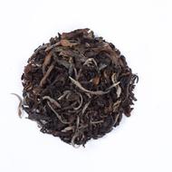 Sparking Oolong Tea By Golden Tips Teas from Golden Tips Teas