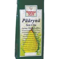 Päärynä sencha - Pear Sencha from Forsman Tea