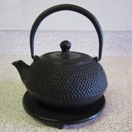 Cast Iron Tea Pot from Rikyu