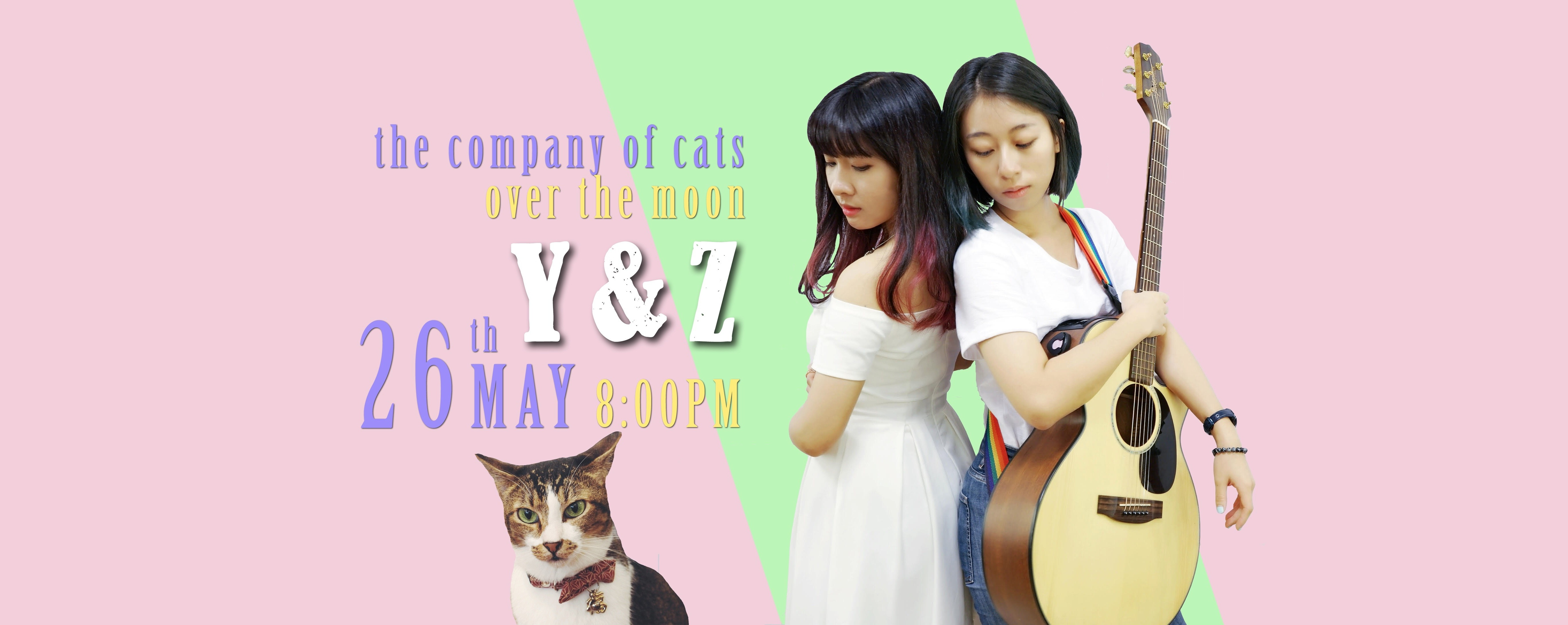 Bi-monthly Mewsic Series - Y & Z at The Company of Cats
