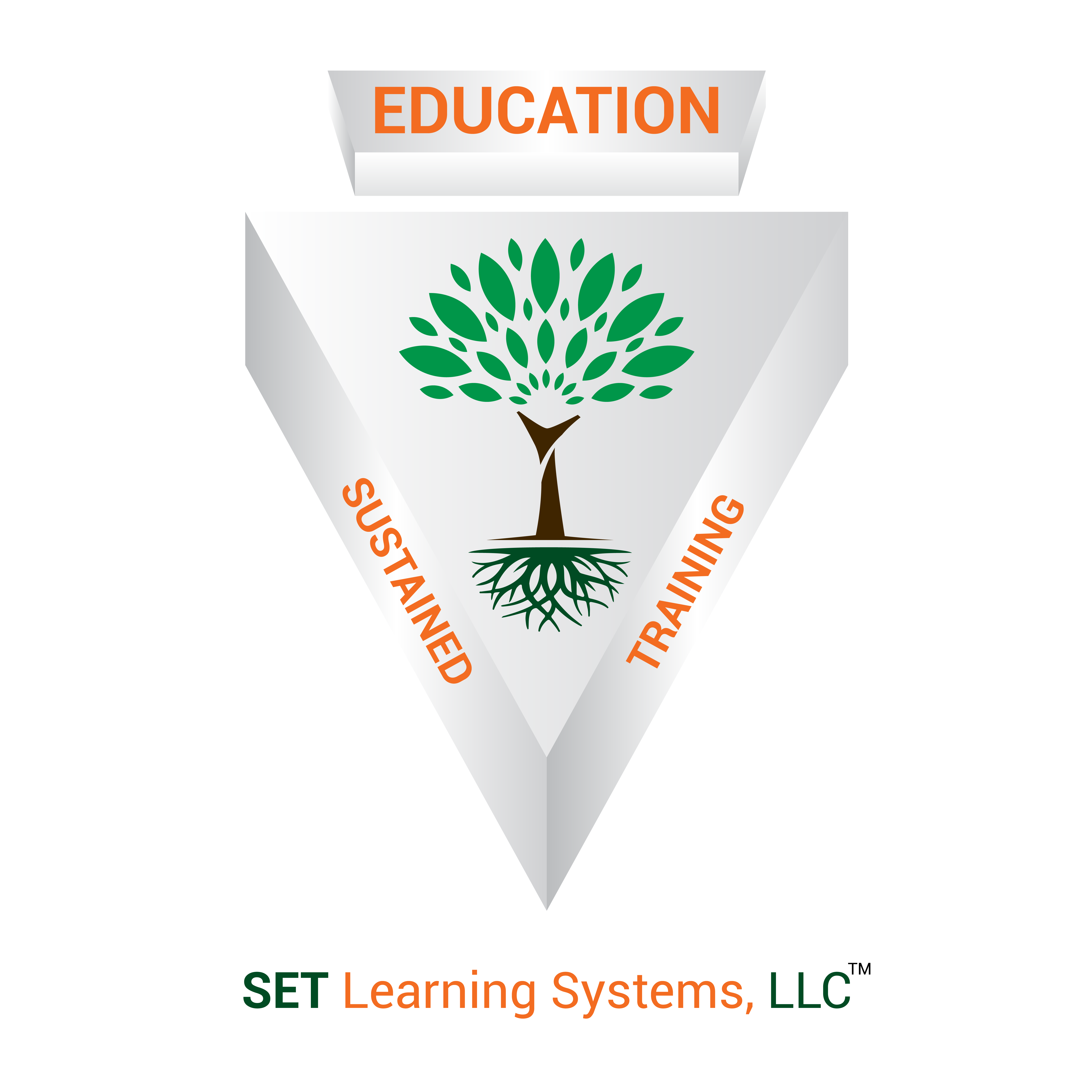 SET Learning Systems