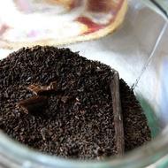 Vanilla Basic Black from joie de tea