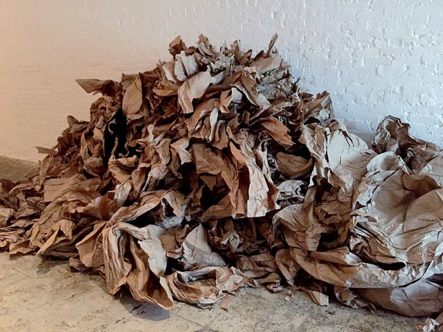 image: At the end of every Paper Dance, Janine Antoni would discard the paper used during her performance.