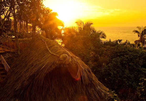 NEW YEARS OCEANSIDE YOGA RETREAT IN THE JUNGLES OF PUERTO VALLARTA