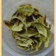 "Early Spring 2011 ""Yunnan Bi Luo Chun"" Green tea from Yunnan Sourcing"