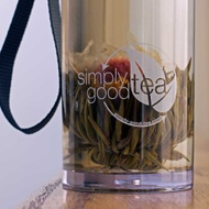 Simply Good Tea Infusion Bottle from Simply Good Tea
