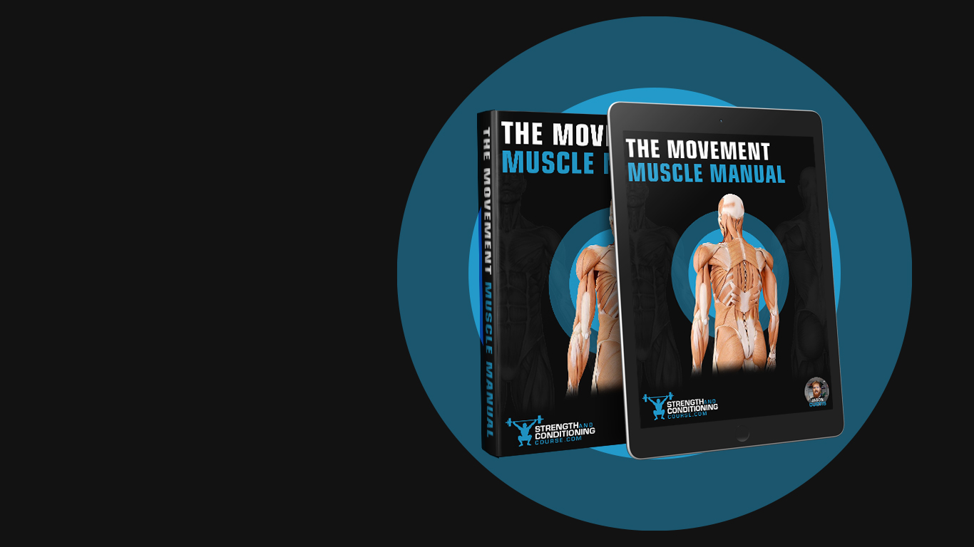 THE MOVEMENT MUSCLE MANUAL