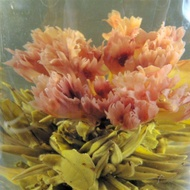 Carnation's Love Blooming Tea-Handmade from JK Tea Shop